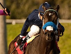 Gutierrez Teams With Handsome Mike in Haskell