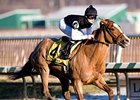 Golden Dawn won the Barbara Fritchie in February at Laurel Park.