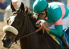 "Zenyatta's next scheduled race is the Clement Hirsch Stakes. After that?<br><a target=""blank"" href=""http://www.bloodhorse.com/horse-racing/photo-store?ref=http%3A%2F%2Fpictopia.com%2Fperl%2Fgal%3Fprovider_id%3D368%26ptp_photo_id%3D8148338%26ref%3Dstory"">Order This Photo</a>"