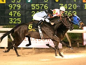 Two Nickle Bud wins the Premier Night  Prince.