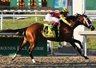 Discreetly Mine went gate to wire to win the Risen Star Stakes.