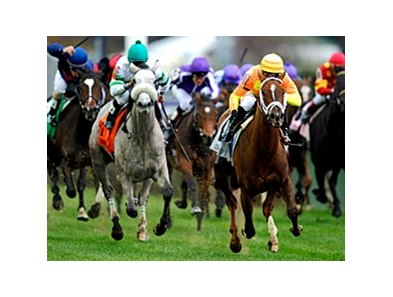 More Than Real and Winter Memories in the BC Juvenile Fillies Turf.