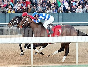 Ride On Curlin (outside) wins an allowance race at Oaklawn Park on 1/15/2015.