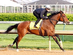 Homeboykris works at Churchill Downs on April 21, 2010.
