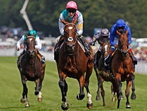 Frankel wins the 2012 Sussex Stakes at Goodwood.