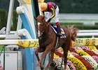 Orfevre wins the Kikuka Sho to take the Japan Triple Crown.