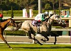 "Wait a While strides towards her 2nd victory in the Yellow Ribbon.<br><a target=""blank"" href=""http://www.bloodhorse.com/horse-racing/photo-store?ref=http%3A%2F%2Fpictopia.com%2Fperl%2Fgal%3Fprovider_id%3D368%26ptp_photo_id%3D6136120%26ref%3Dstory"">Order This Photo</a>"