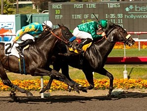 Morning Line wins the 2012 Mervyn LeRoy.