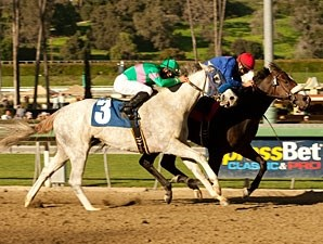 California Nectar wins the 2011 Santa Ynez.