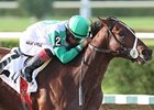 Csaba won the Tropical Park Derby by 14 lengths on Oct. 13.