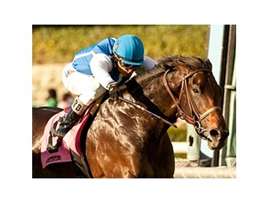 Silentio won the Sir Beaufort at Santa Anita on Dec. 26.