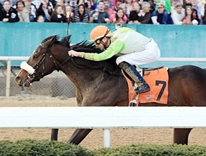 J W Blue Allowance win 01/29/11