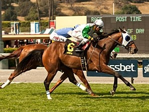 Scarlet Strike wins the 2013 Providencia.