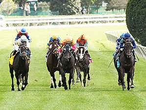 No Nay Never wins the 2014 Woodford Stakes.