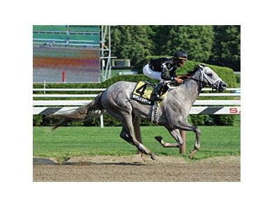 "Wired Bryan won the 2013 Sanford Stakes.  <br><a target=""blank"" href=""http://photos.bloodhorse.com/AtTheRaces-1/at-the-races-2013/27257665_QgCqdh#!i=2648402646&k=bqzRZtT"">Order This Photo</a>"
