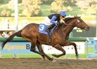 "Bob Black Jack went gate to wire to easily win the $250,000 Malibu Stakes.<br><a target=""blank"" href=""http://www.bloodhorse.com/horse-racing/photo-store?ref=http%3A%2F%2Fpictopia.com%2Fperl%2Fgal%3Fprovider_id%3D368%26ptp_photo_id%3D7221715%26ref%3Dstory"">Order This Photo</a>"