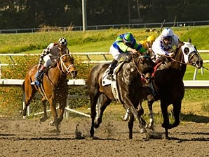 Golden Itiz wins the 2010 Affirmed.
