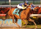 "Richiegirlgonewild was first graded winner for Wildcat Heir.<br><a target=""blank"" href=""http://www.bloodhorse.com/horse-racing/photo-store?ref=http%3A%2F%2Fpictopia.com%2Fperl%2Fgal%3Fprovider_id%3D368%26ptp_photo_id%3D8735866%26ref%3Dstory"">Order This Photo</a>"