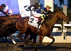 Lukes Alley won Autumn Stakes in final start of 2014