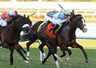 "Courageous Cat comes home strong in the Canadian Turf.<br><a target=""blank"" href=""http://www.bloodhorse.com/horse-racing/photo-store?ref=http%3A%2F%2Fpictopia.com%2Fperl%2Fgal%3Fprovider_id%3D368%26ptp_photo_id%3D8802773%26ref%3Dstory"">Order This Photo</a>"