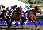 "Muhannak holds of Church Service to take the first running of the Breeders' Cup Marathon.<br><a target=""blank"" href=""http://www.bloodhorse.com/horse-racing/photo-store?ref=http%3A%2F%2Fpictopia.com%2Fperl%2Fgal%3Fprovider_id%3D368%26ptp_photo_id%3D6455748%26ref%3Dstory"">Order This Photo</a>"