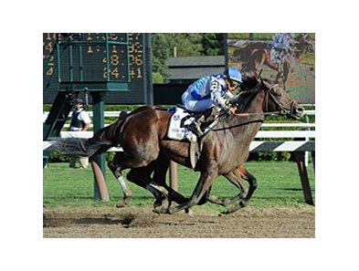 "Whitney winner Blame is the 8-5 morning-line favorite in the Jockey Club Gold Cup.<br><a target=""blank"" href=""http://www.bloodhorse.com/horse-racing/photo-store?ref=http%3A%2F%2Fpictopia.com%2Fperl%2Fgal%3Fprovider_id%3D368%26ptp_photo_id%3D9133157%26ref%3Dstory"">Order This Photo</a>"