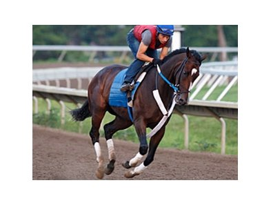 Rachel Alexandra, seen here in a previous work, breezed a strong six furlongs in 1:12.96 Aug. 9 at Saratoga.