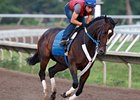 Rachel Alexandra, shown galloping at Monmouth Park on July 21, takes on 6 in the Lady's Secret.