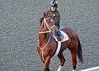 Havre de Grace Breezes Half Mile