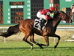 String King wins the 2012 Mr. Sulu Stakes.