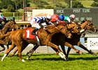 Costume (inside, pink cap) hangs on for victory in a thrilling Santa Ana Handicap (gr. IIT).