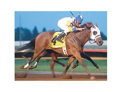 Iowa Oaks winner Seeking the Title faces 5 in the Monmouth Oaks.