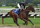 "R Free Roll appears the one to beat in the Sugar Swirl.<br><a target=""blank"" href=""http://photos.bloodhorse.com/AtTheRaces-1/At-the-Races-2014/i-9G3RwfX"">Order This Photo</a>"
