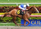 "Shackleford pulls away for an allowance win at Gulfstream.<br><a target=""blank"" href=""http://www.bloodhorse.com/horse-racing/photo-store?ref=http%3A%2F%2Fpictopia.com%2Fperl%2Fgal%3Fprovider_id%3D368%26ptp_photo_id%3D9421336%26ref%3Dstory"">Order This Photo</a>"