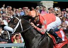 "Commonwealth Stakes winner Together Indy takes on 6 in the Vigil Stakes.<br><a target=""blank"" href=""http://www.bloodhorse.com/horse-racing/photo-store?ref=http%3A%2F%2Fpictopia.com%2Fperl%2Fgal%3Fprovider_id%3D368%26ptp_photo_id%3D8886021%26ref%3Dstory"">Order This Photo</a>"