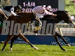 Wigmore Hall wins the 2011 Northern Dancer Turf.
