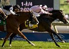 Wigmore Hall won the Northern Dancer in 2011.
