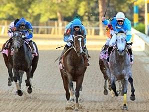 On Fire Baby wins the 2013 Apple Blossom.