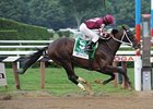 "Tizway<br><a target=""blank"" href=""http://www.bloodhorse.com/horse-racing/photo-store?ref=http%3A%2F%2Fpictopia.com%2Fperl%2Fgal%3Fprovider_id%3D368%26ptp_photo_id%3D9627389%26ref%3Dstory"">Order This Photo</a>"