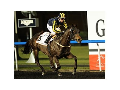 2012 Dubai Golden Shaheen winner Krypton Factor faces a full field in the Al Shindagha Sprint.