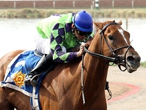Red Lead wins the 2010 Sunland Park Breeders' Cup Handicap.