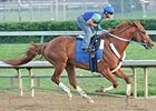 Curlin, shown during his June 2 workout, will start in the Stephen Foster (gr. I) at Churchill Downs.