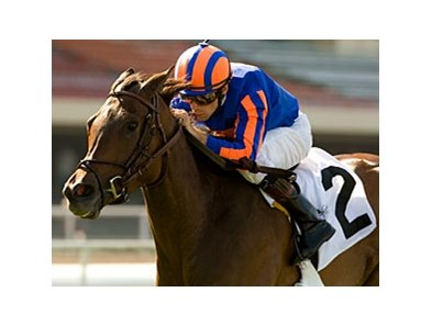 "Turning Top is a three-time winner on the Hollywood Park turf.<br><a target=""blank"" href=""http://www.bloodhorse.com/horse-racing/photo-store?ref=http%3A%2F%2Fpictopia.com%2Fperl%2Fgal%3Fprovider_id%3D368%26ptp_photo_id%3D9085798%26ref%3Dstory"">Order This Photo</a>"