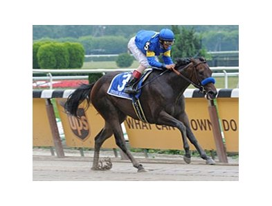 "Champion Indian Blessing may skip the Golden Shaheen.<br><a target=""blank"" href=""http://www.bloodhorse.com/horse-racing/photo-store?ref=http%3A%2F%2Fpictopia.com%2Fperl%2Fgal%3Fprovider_id%3D368%26ptp_photo_id%3D5030846%26ref%3Dstory"">Order This Photo</a>"