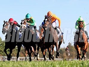 Moonwalk wins the 2012 Jessamine Stakes.