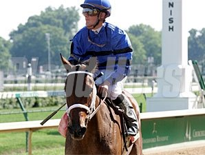 Decelerator wins the 2009 Debutante.