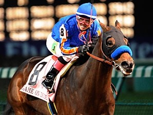 Game On Dude in the 2011 Breeders' Cup Classic.