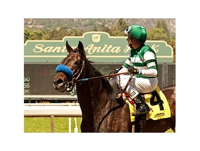 Lady of Shamrock was awarded the Santa Barbara Handicap via disqualification.