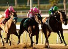 "Vision in Gold (right) gets the best of Zardana (middle) and St Trinians in the Santa Maria.<br><a target=""blank"" href=""http://www.bloodhorse.com/horse-racing/photo-store?ref=http%3A%2F%2Fpictopia.com%2Fperl%2Fgal%3Fprovider_id%3D368%26ptp_photo_id%3D9403342%26ref%3Dstory"">Order This Photo</a>"