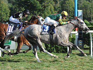 Unbridled Command wins the Saranac Stakes.